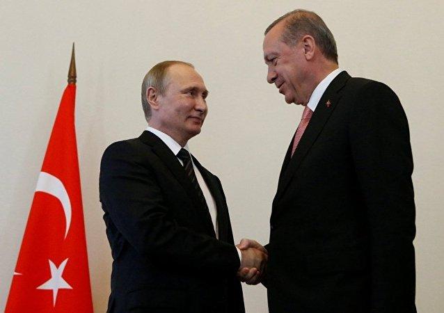 普京与埃尔多安危机后首次小范围会谈持续两小时