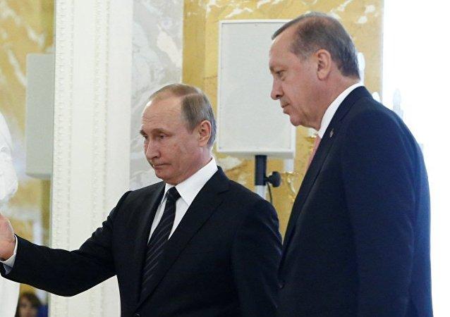 俄总统普京和土耳其总统埃尔多安/资料图片/