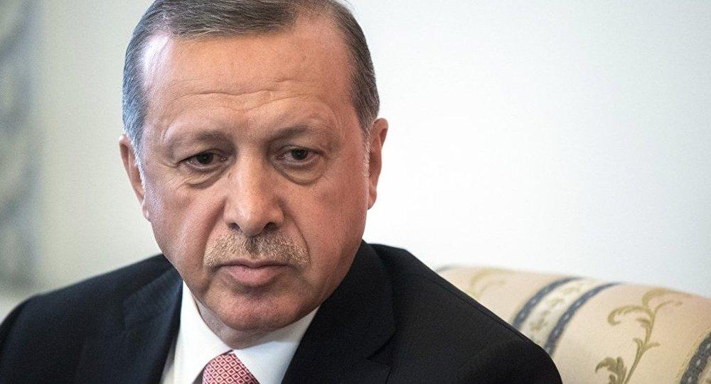 土耳其总统表示希望与普京通电话讨论叙利亚危机