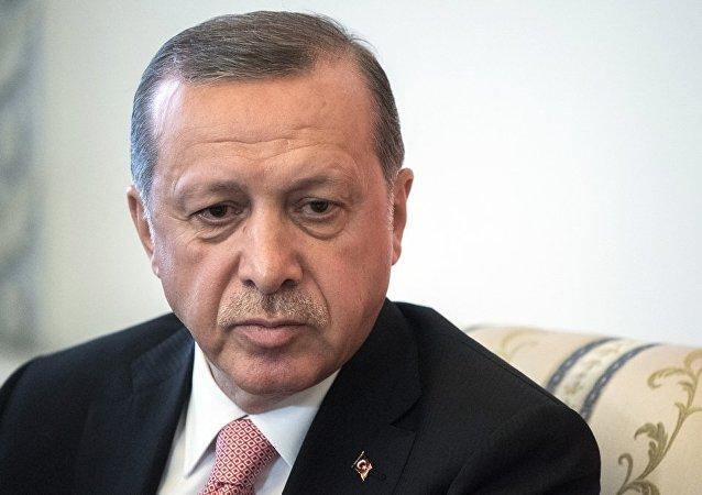 土耳其总统:美俄与叙利亚库尔德人来往让人痛心