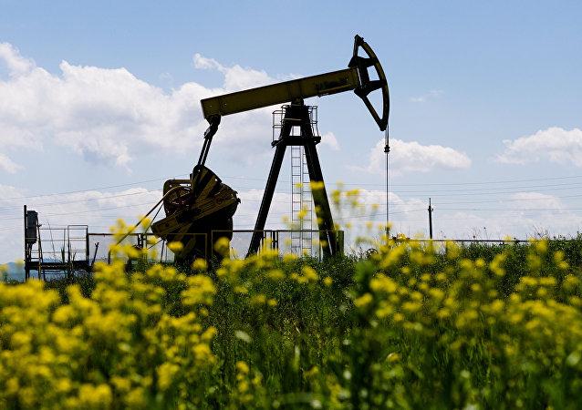 俄常驻欧佩克代表:俄理论上有可能考虑减产石油