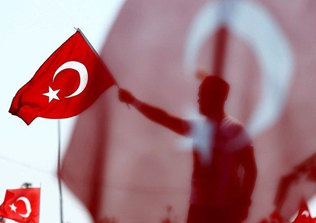 媒体:土耳其威胁退出北约