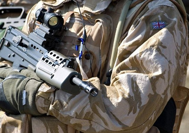 """媒体:英国军队计划使用迷你""""蜻蜓无人机""""进行侦察"""