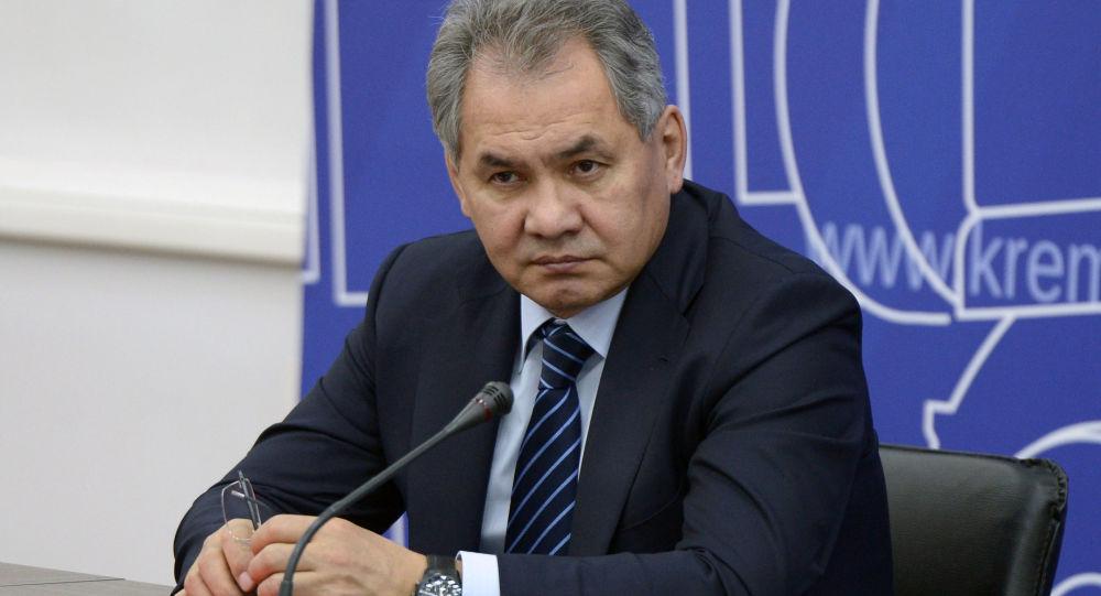 俄防长:叙利亚各冲突降级区内停火均得到实际遵守