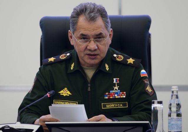 绍伊古:俄美两国需要解决一系列涉叙问题