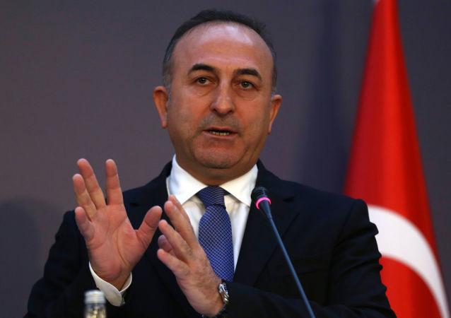 土耳其外长:美国大使的言行不应像土耳其省长一样