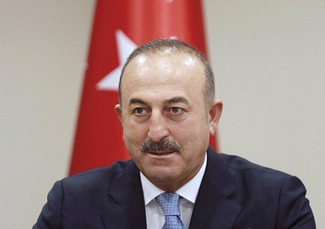 土耳其外长:土俄应合力终结叙利亚战争