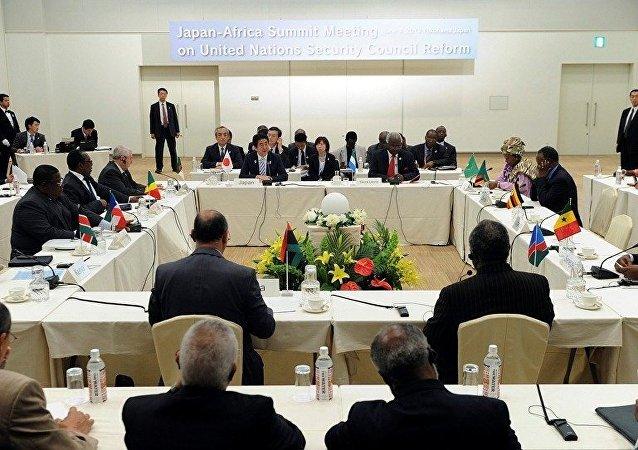 媒体:35国首脑或将出席第六届非洲开发会议