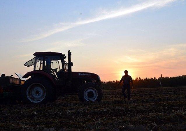 俄农业部:俄小麦出口关税将在2018年7月前取消