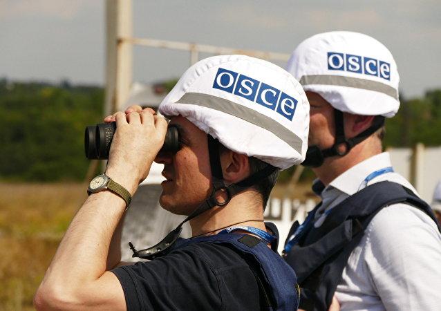 俄呼吁欧安组织驻乌特别监督团就2014年来轰炸顿巴斯情况起草报告