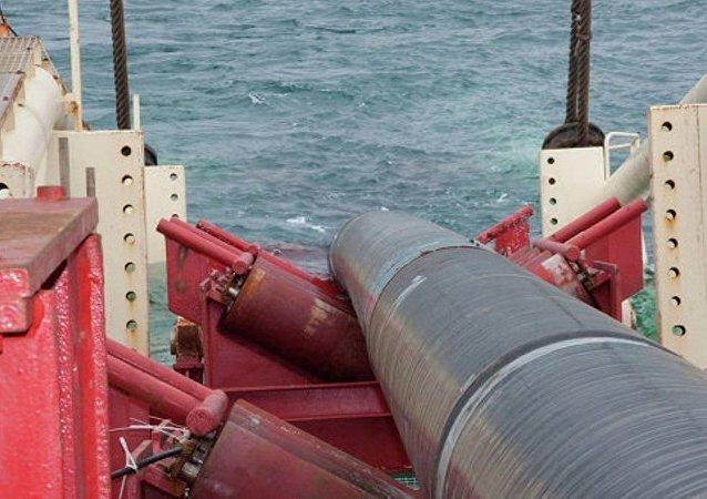 土总统:土俄两国输气管道和核电站建设项目正回到原先正轨