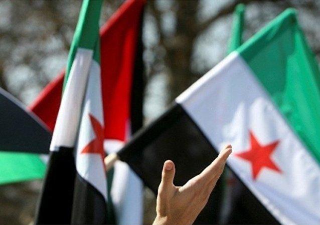 叙反对派希望中国积极参与调解叙利亚危机
