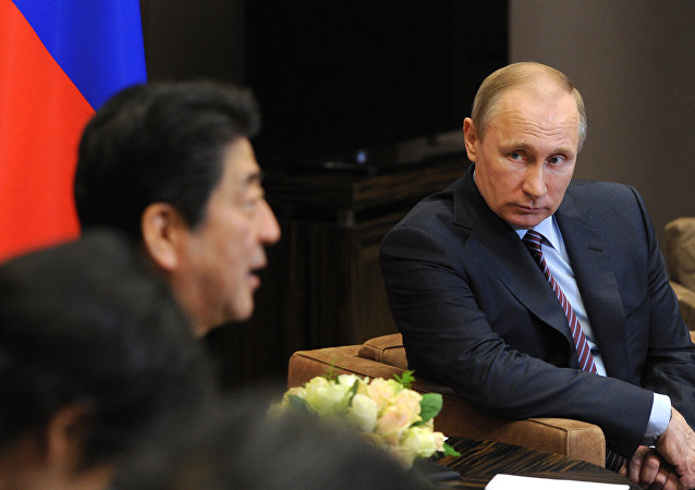 克宫:普京与安倍可能在会晤上讨论南千岛群岛问题