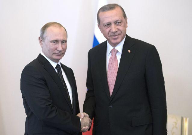 俄土总统在伊斯坦布尔讨论国防合作议题