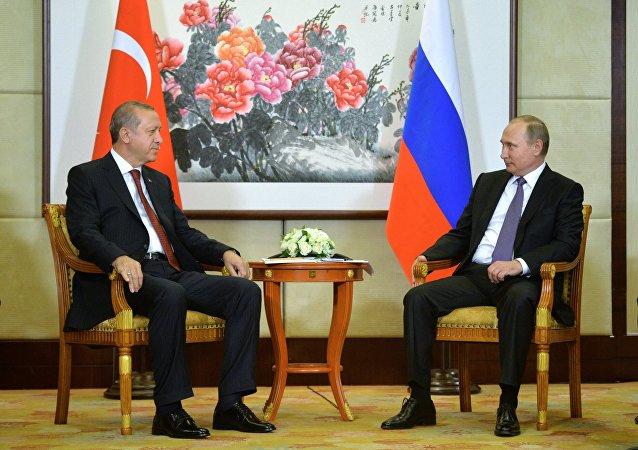 普京计划与埃尔多安在杭州讨论恢复俄土全面合作问题
