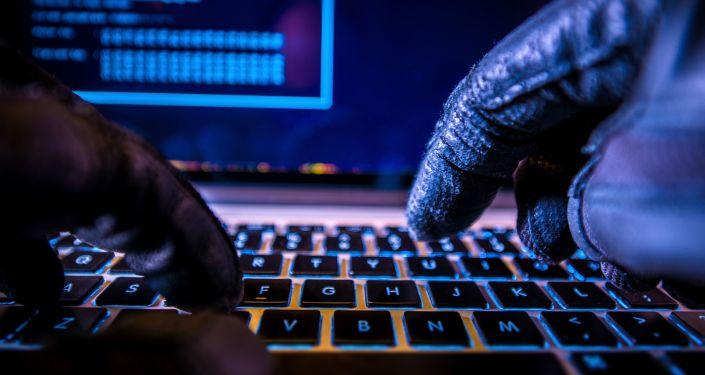 欧安组织未发现美国大选电子系统受外界干扰
