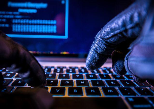 媒体:FBI局长曾反对将黑客袭击归罪于俄罗斯