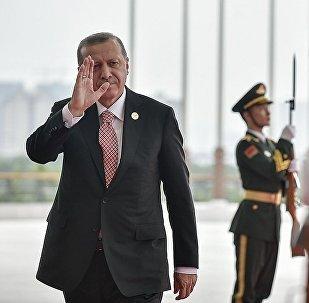 土总统新闻处:埃尔多安5月3日将访俄