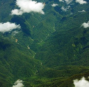 新几内亚巴布亚群岛发生8级地震