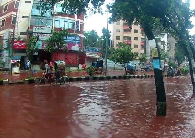 """孟加拉国首都因宰牲节""""血流成河"""""""