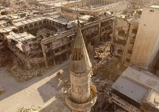 俄德两国外长表示愿审议联合国叙利亚问题特使有关阿勒颇的提案
