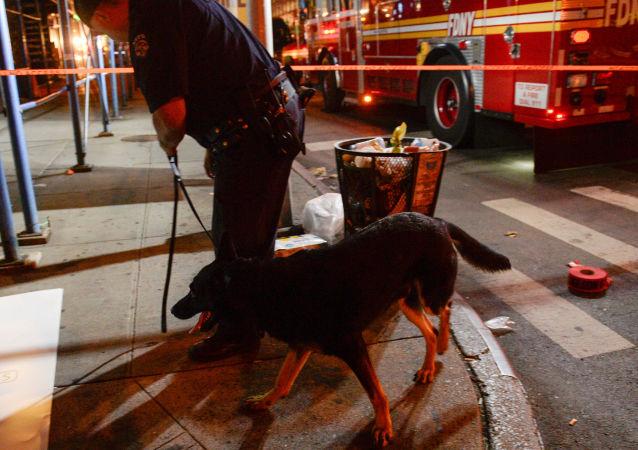 纽约爆炸案嫌犯曾在eBay网上购买制作炸弹组件