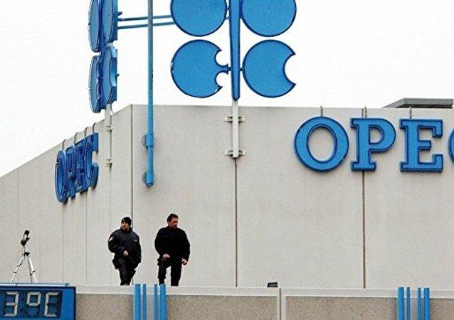 普京期望欧佩克11月会议将达成协议