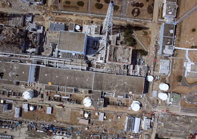 机器鱼开始在福岛第一核电站3号机组水下作业