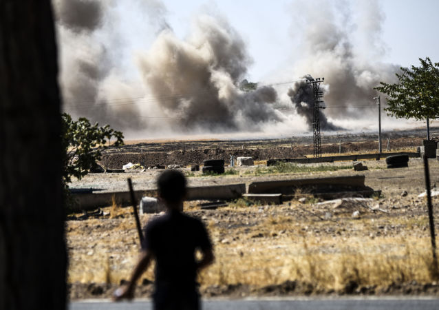 拉夫罗夫︰ 美国就空袭叙军向阿萨德道歉