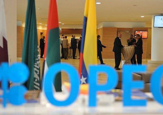 欧佩克28日或在阿尔及尔举行特别会议