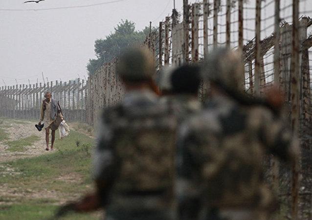 """印度边防人员""""扣押""""一只来自巴基斯坦携带致莫迪信函的鸽子"""