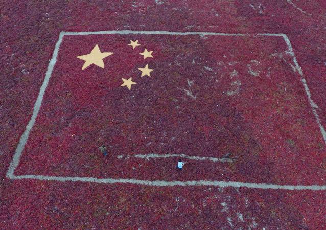 张掖市副市长:张掖将加强与丝绸之路经济带沿线国家交流合作