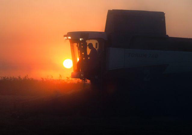 中粮集团计划投资哈巴罗夫斯克边疆区农业领域