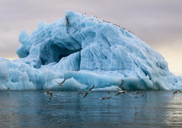 俄总检察院正研究在北极地区设立特别检察院保护生态环境