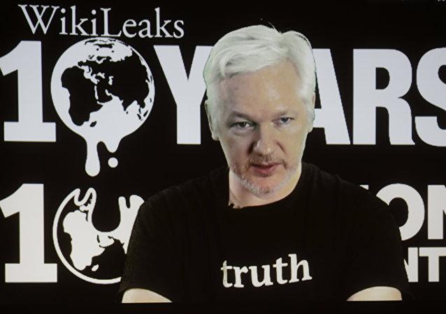 阿桑奇:维基解密将公布一些涉及三国政府和美大选的重要资料