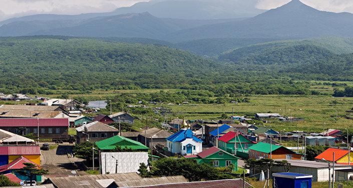 日媒报道称,日本外相宣布将召开与俄在南千岛群岛上共同经济活动问题部门间委员会会议