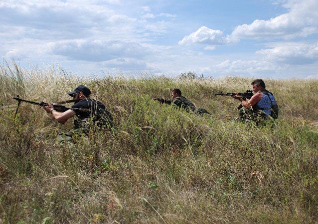自行宣布成立的顿涅茨克人民共和国/资料图片/