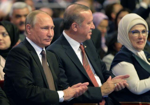 普京:俄土政府间委员会将进一步努力推动两国关系的正常化