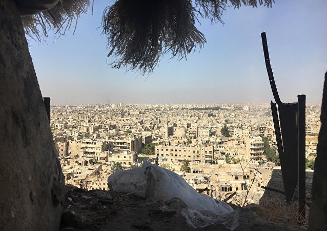 叙阿勒颇东部地区