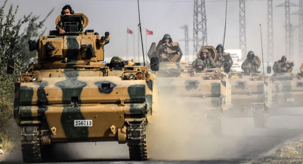 """土耳其总统:土军在叙利亚的最终目的是将边境地区从""""伊斯兰国""""手中解放"""