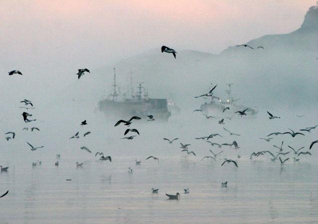 中国外交部:中韩正在就近期渔业纠纷进行沟通协商