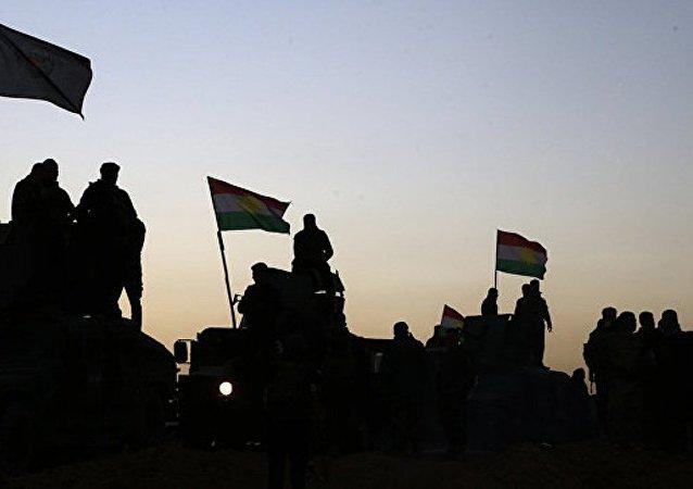俄议员:摩苏尔行动旨在将武装分子赶入叙利亚以对抗阿萨德