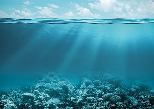 俄通讯部:俄正在研究建设跨海底光纤通信线路的可能性