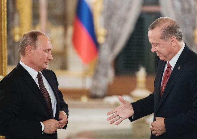 俄总统普京同土耳其总统埃尔多安举行电话会谈讨论叙利亚局势
