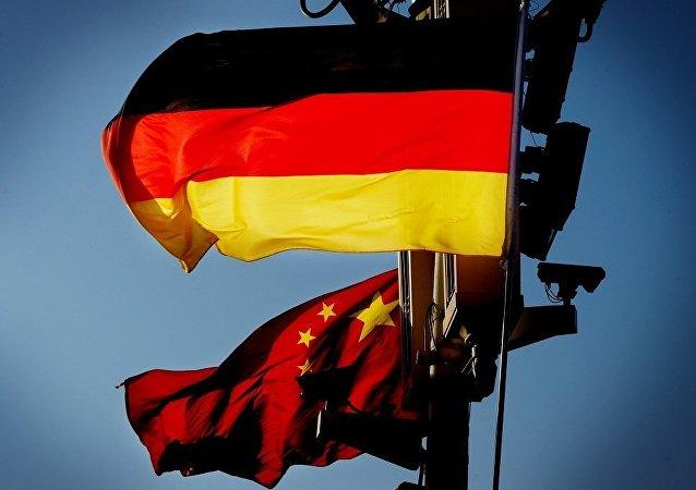 德國總統會見中國外長 雙方表示發揮中德關係對中歐關係的引領作用