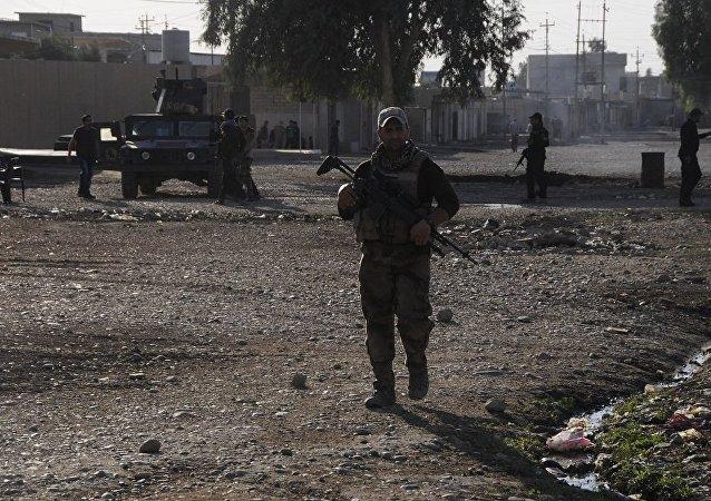 媒体:联军预计解放摩苏尔之战还将持续2个月