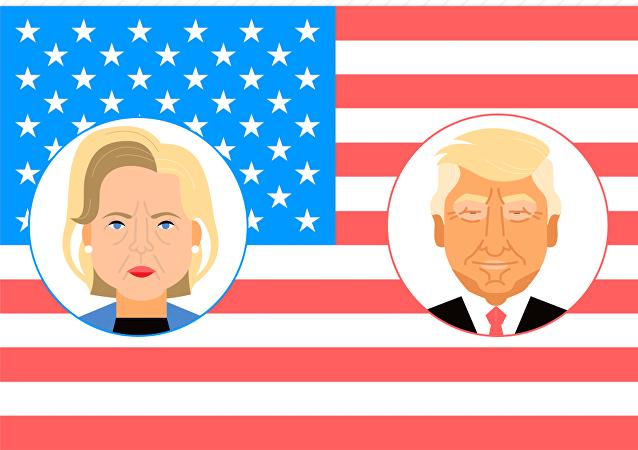 2016年美国总统大选