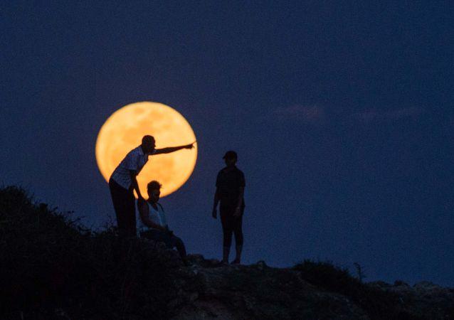 """月球上发现""""生命痕迹"""""""
