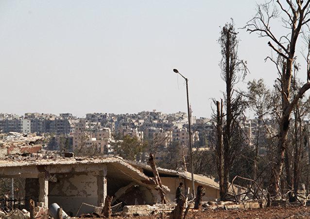 俄总统新闻秘书:俄未恢复对阿勒颇东部恐怖分子的轰炸