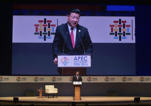 习近平:中俄应深化亚太自贸区的推进进程